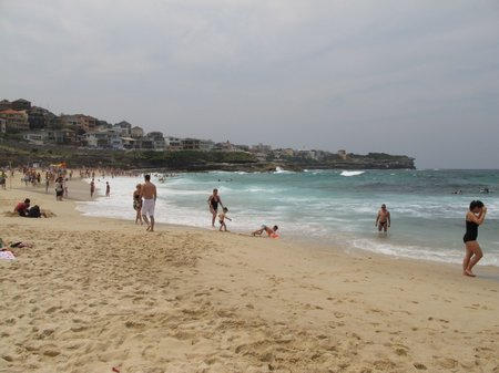 Beach In Sydney Manly Beach