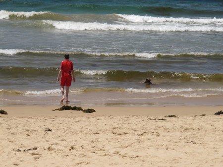 Beach In Sydney Manly Beach Narrow