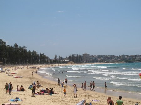 Beach in Sydney Manly Beach Wide