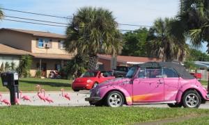 pink-flamingo-sleigh