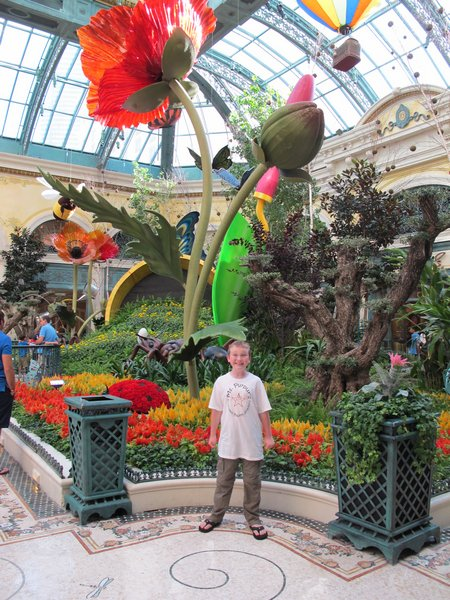 bellagio-conservatory