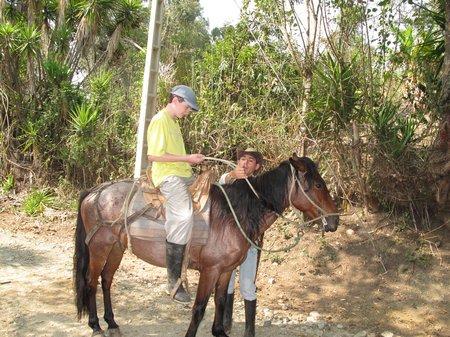 podocarpus-national-park-ecuador.jpg