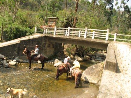 vilcabamba-ecuador-horse-trekking