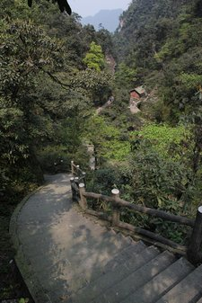 china-mt-emei-trail-slope
