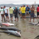 ecuador-tourism-landing-catch-puerto-lopez.jpg