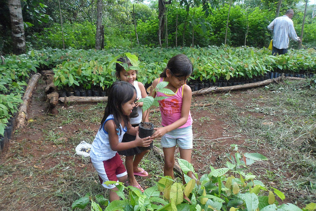 Sustainable-Harvest-children